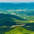 View of the Shenandoah Valley from Jewell Hollow Overlook in She — Stock Photo