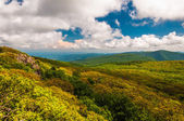 Spring color in the Blue Ridge Mountains, seen from Stony Man Mo — Stock Photo