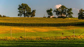 Farm fields along a country road in York County, Pennsylvania. — Fotografia Stock