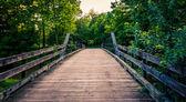 古い木造橋南ヨーク郡、pennsylv の入り江 — ストック写真
