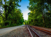 Railroad tracks along the Northern Central Railroad trail in Yor — Stock Photo