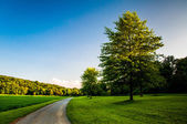 Trees and lawn along dirt path in Southern York County, Pennsylv — Stock Photo