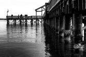 Zwart-wit beeld van een visserij-pier uit te breiden in de potom — Stockfoto