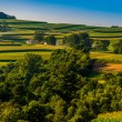 Stock Photo: View of rolling hills and farms in Southern York County, Pennsyl