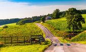 Fattoria campi lungo una strada di campagna rurale york county, pennsylva — Стоковое фото