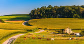 Horse farm and country road on a hill in rural York County, Penn — Stock Photo