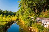 Creek e la zona umida lungo una strada di campagna nel sud della contea di york, — Foto Stock