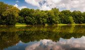 Reflektion av träd och moln i potomac river, på bollar bl — Stockfoto