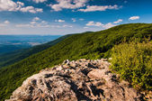 View of the Shenandoah Valley and Appalachian Mountains from Cre — Foto Stock