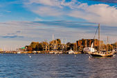 Boats in the harbor of Annapolis, Maryland. — Stock Photo