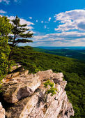 View from Annapolis Rocks, along the Appalachian Train on South — Stock Photo