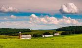 Céu de verão linda sobre campos de celeiro e fazenda no sul york — Fotografia Stock