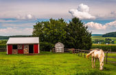 Horse and red stable in a field in Southern York County, Pennsyl — Stock Photo