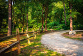 Fence along a dirt road through a forest in York, Pennsylvania. — Stock Photo