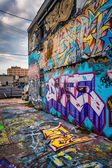 Incredible artwork in Graffiti Alley, Baltimore, Maryland. — Zdjęcie stockowe