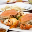 Steamed crabs — Stock fotografie #27026587