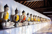 Row of ancient buddha — Stock Photo