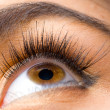 Eyelashes — Stock Photo #27142805