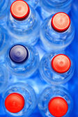 Water Bottles in Blue Containe — Stock Photo