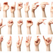 American sign language alphabet — Stock Photo
