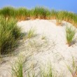 Sand Dunes in the Summer Time — Stock Photo