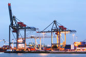 Large Docks at Rotterdam Harbor — Stock Photo