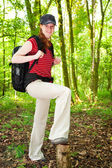 Hiker in the Woods — Stock Photo