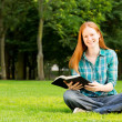 Young Believer with Bible in Park — Stock Photo #30647291