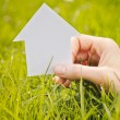 House on Green Field — Stock Photo #46959293