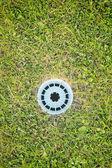 ゴルフの穴および草 — ストック写真