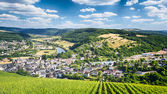 Vineyards and Mountains near Saarburg — Stock Photo