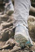 Hiking or Mountaineering — Stock Photo