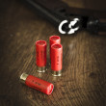 Shotgun Ammunition for Hunting — Stock Photo #27588435