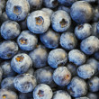 Blueberries in XXXL — Stock Photo