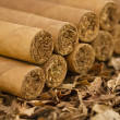 Cigars on Tobacco — Stock Photo #27588781
