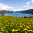 Norwegian Fjord in Sunnmore — Stock Photo