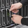 IT Consultant Replace Hard Drive Blade Server — Stock Photo #28026193