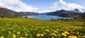 挪威峡湾中孙默勒 — 图库照片