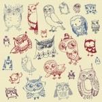 collection de doodle chouette - dessinés à la main - vecteur — Vecteur