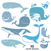Set of cute cartoon Whale Characters. Hand drawn vector illustra — Stock Vector
