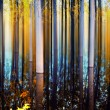 Blurry forest — Stockfoto