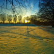 Suset in winter — Stock Photo #31808149