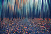 Abstract forest in autumn time — Stock Photo