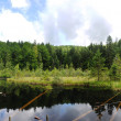 Lake Scenery Kuusamo Finland — Stock Photo