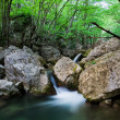 Stock Photo: Woodland Stream