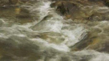 Arroyo de montaña hermosa — Vídeo de Stock