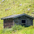 Stock Photo: Hut