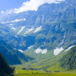 Alpine landscape in summer — Stock Photo