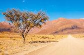 Road to White Lady — Stock Photo