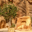 Stock Photo: Altar in Petra
